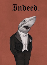 indeed shark