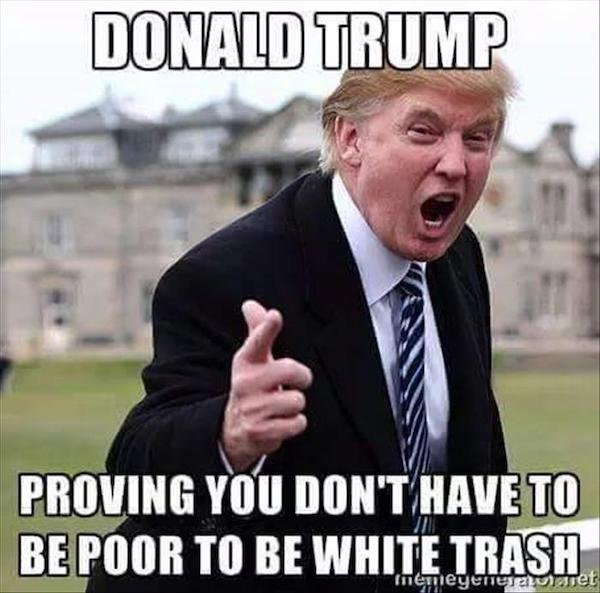 Funny-Donald-Trump-Meme-Proving-You-Dont-Have-To-Be-Poor-To-Be-White-Trash-Picture